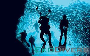 Experience world-class diving in Sipadan with Eko Divers! Join now to dive the wall in Sipadan, and experience for yourself the tornado of barracuda. Sea turtles and white tip reef sharks are an almost-guarantee, and get a chance to dive with hammerhead and leopard sharks if you're lucky!
