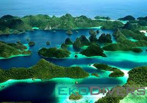 "Dive at Raja Ampat with Eko Divers as this majestic place casts a spell on all who visit – scientists, photographers, novice divers and crusty sea-salts alike. This group of majestic islands, located in the northwestern tip of Indonesia's Papuan ""Bird's Head Seascape,"" lies in the heart of the coral triangle, the most bio-diverse marine region on earth."