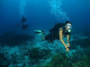 Road to Dive Master…A Tale to be Told