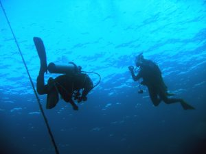 4 Scuba diving courses not for the faint-hearted